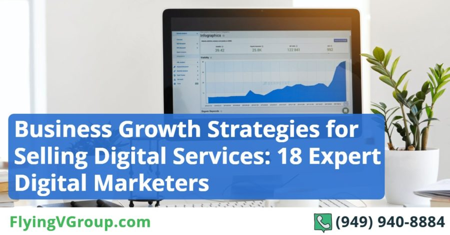 Business Growth Strategies for Selling Digital Services_ 18 Expert Digital Marketers Reveal How to Deal with Client Objections and Pricing Issues
