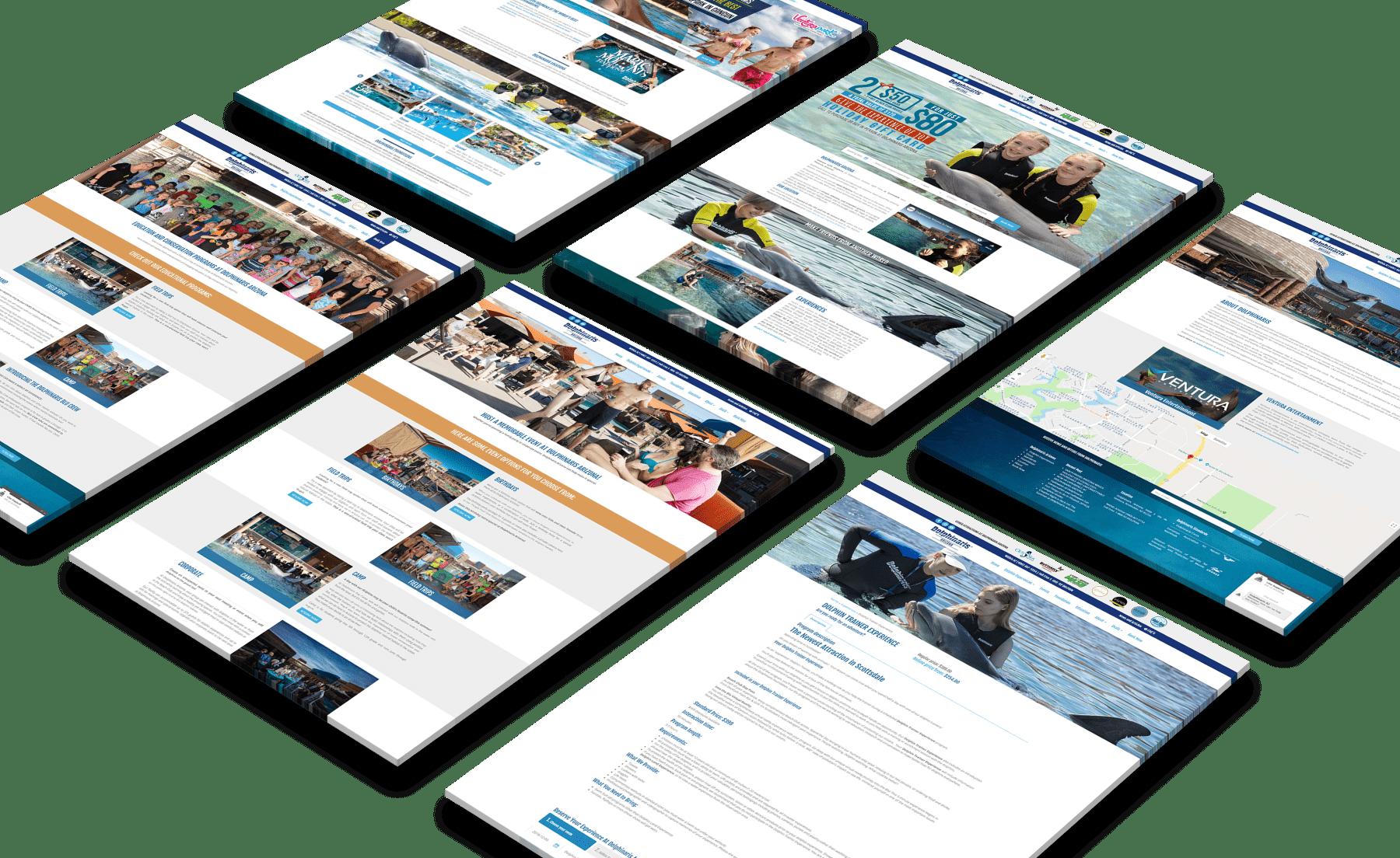 Dolphinaris Website Design