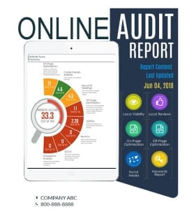 Flying V Group Online Audit