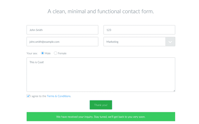 optimized contact form